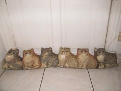 boudin porte chats.jpg