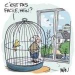 oiseaux cage.jpg