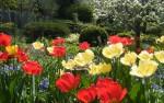 campagne jardin.jpg
