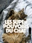 chat superpouvoir.jpg