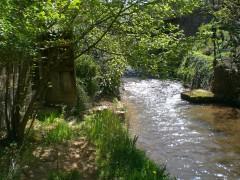 jardin et rivière.jpg
